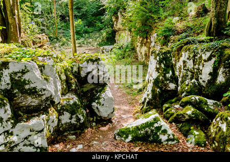 Mithraic temple (Mithraeum II century) situated in chestnut forest above Rozanc, Bela Krajina (White Carniola) region, - Stock Photo