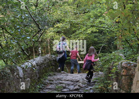 Kids playing on bridge, kids outdoors, kids playing, siblings, children outdoors - Stock Photo