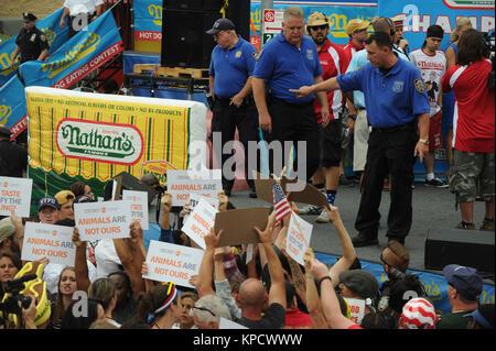 NEW YORK, NY - JULY 04: Matt Stonie eats 62 hot dogs to upset Joey Chestnut as the new winner of the 2015 Nathan's - Stock Photo