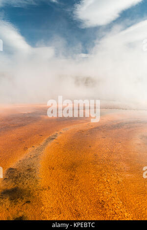 Bacterial Mat at Grand Prismatic Hot Spring in Yellowstone National Park, Wyoming