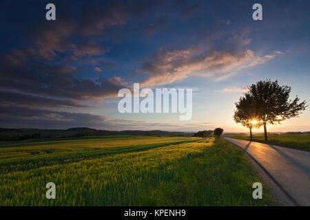 Felder und Weisen im Licht mit Schatten und Wolken,Sonnenstrahlen,Wolken über Landschaft