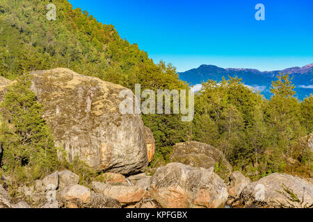 Patagonia landscape forest scene at queulat national park, aysen, chile - Stock Photo