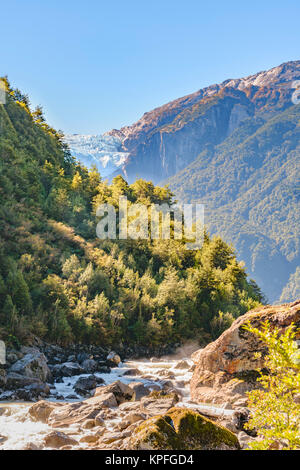 River crossing forest landscape at queulat national park, aysen, chile - Stock Photo