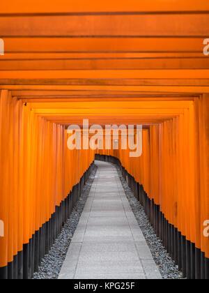 Road of Toris in Fushimi Inari shrine - Stock Photo