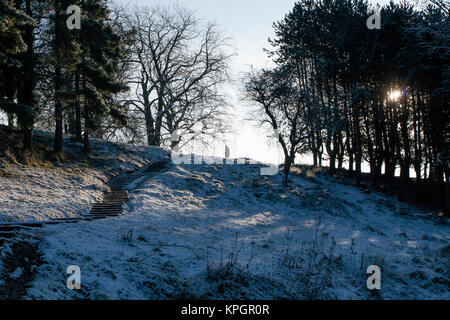 People waling in snow in the Phoenix Park in Dublin on a beautiful winter morning on the first day of the New Year - Stock Photo