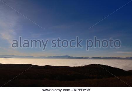wald und dichter nebel im tal - Stock Photo