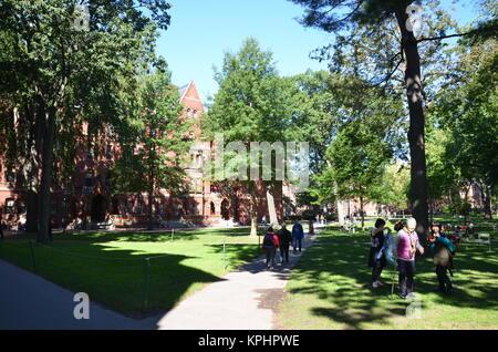 Tourists and students in Harvard Yard, Harvard University, Cambridge, Massachusetts, USA - Stock Photo