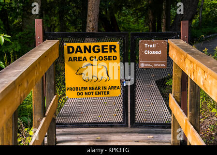 Bear warning sign posted on a closed gate where a trail has been closed, Liard River Hot Springs Provincial Park; - Stock Photo