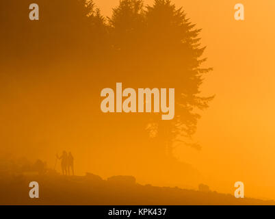 Sunset lights up the fog  with a golden glow on the Oregon Coast; Seaside, Oregon, United States of America - Stock Photo