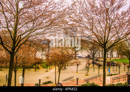 A winter day in the square that borders the rhine river as it passes through the city of Cologne - Stock Photo