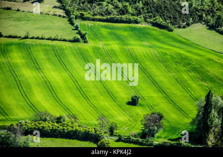 view of green fields carved in the midi pyrenees region to the south of france. - Stock Photo