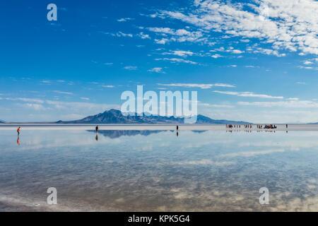 Tourists walk in inches deep salt water near Bonneville Salt Flats; Wendover, Utah, United States of America - Stock Photo