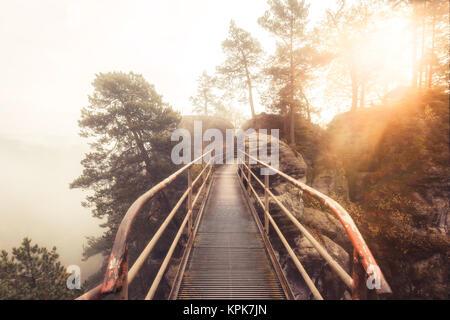 A metal bridge through the Elbe Sandstone Mountains near Rathen on a misty morning - Stock Photo