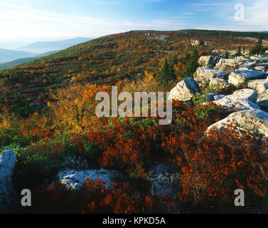 USA, West Virginia, Monongahela National Forest, Bear Rocks in Dolly Sods Wilderness Area (Large format sizes available) - Stock Photo