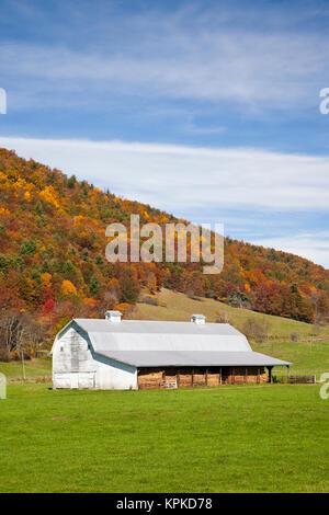 USA, West Virginia, Green Bank. Farm barn, autumn. - Stock Photo