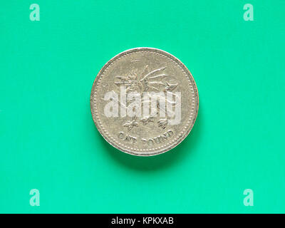GBP Pound coin - 1 Pound - Stock Photo