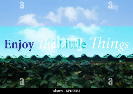 Enjoy the little things inspirational and motivational quote - Stock Photo