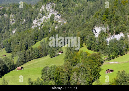At the foot of the rocky mountain there is a forest area and meadows with several small huts as seen from Lauterbrunnen - Stock Photo