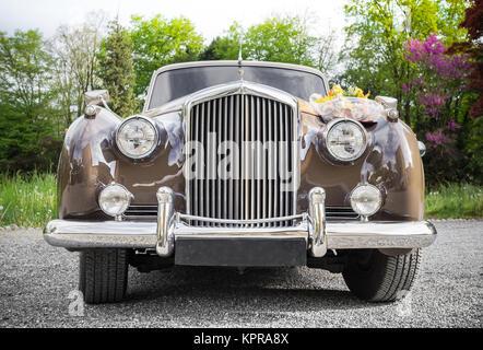 Wedding car - Stock Photo