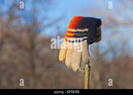 Lost Knitted Child's Glove - Stock Photo