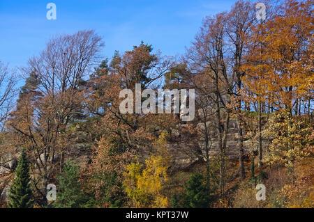 Jonsdorf Felsen im Herbst im Zittauer Gebirge - Jonsdorf rocks in fall in Zittau Mountains - Stock Photo