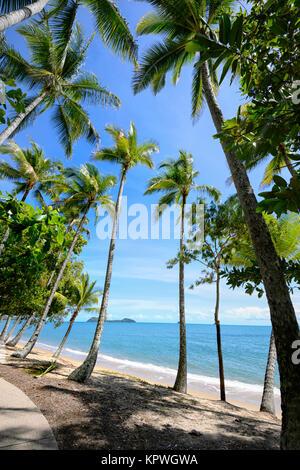 Palm-fringed sandy beach of Clifton Beach near Cairns, Far North Queensland, FNQ, QLD, Australia - Stock Photo
