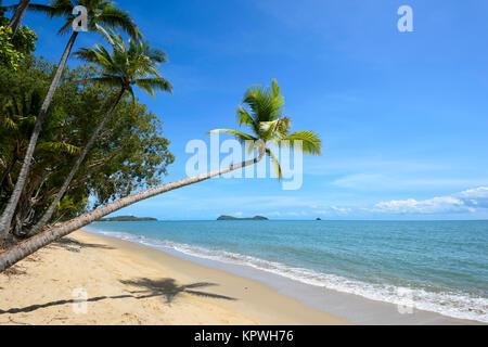 Palm-fringed sandy beach of Clifton Beach, Northern Beaches suburb Cairns, Far North Queensland, FNQ, QLD, Australia - Stock Photo