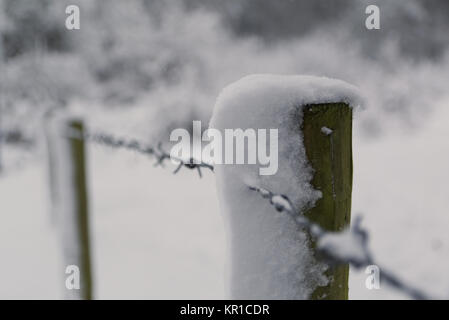 Wooden post in barbed razor wire fence covered on snow with woods in the background. Leading line of fence with - Stock Photo