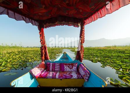 Beautiful view from the traditional shikara boat on Dal lake, Srinagar, India. - Stock Photo