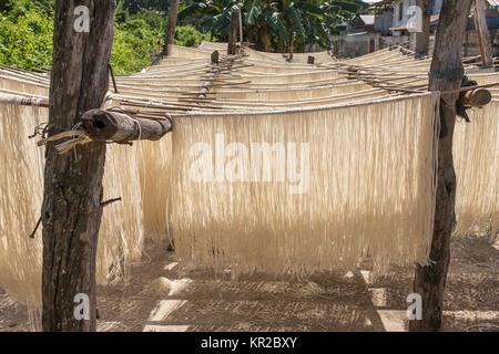 Homemade rice pasta drying on sun in Myanmar. - Stock Photo