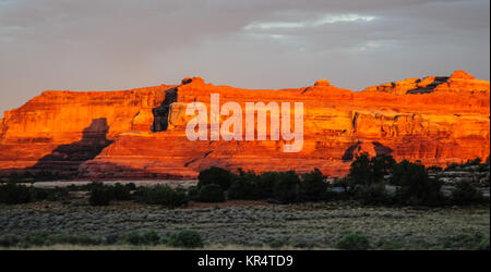 Sunset casting a red glow on the rocks of the Needles area in Canyonlands National Park, Utah. - Stock Photo
