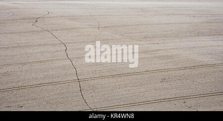 A footpath forms a wobbly line through a field of wheat crop with otherwise regimented tractor wheel lines in the - Stock Photo