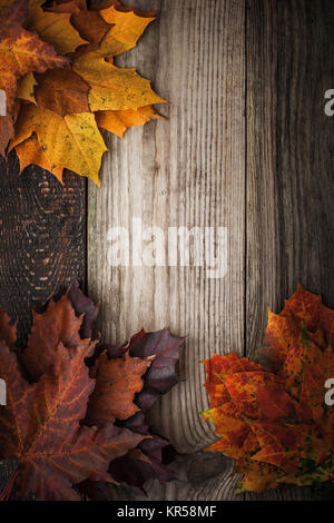 Colorful autumnal maple leaves on the wooden table vertical - Stock Photo