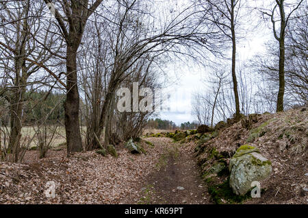 Countryside old country road in fall - Stock Photo