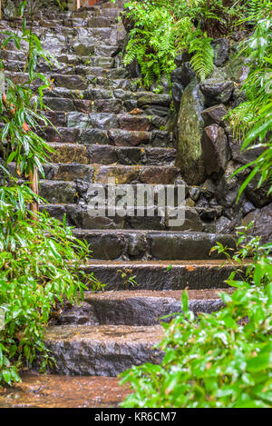 Wet Stone Steps in kyoto, Japan. - Stock Photo