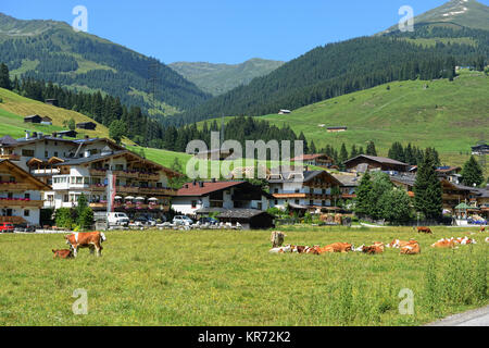 Gerlos, Tirol/ AUSTRIA July 16 2013: European alps and village Gerlos in Tirol (Austria). Zillertal Arena. Cows - Stock Photo