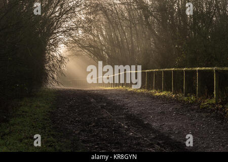 Early morning winter sun's rays through the trees and mist on a country walk in December, Blackpool, Lancashire, - Stock Photo