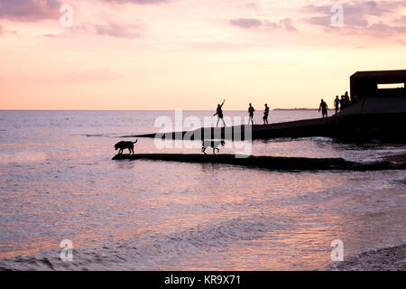 Sea jetty at sunset on brighton beach, the jetty is silhoutted black by the bright orange and yellow glow of the - Stock Photo