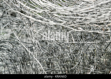 entangled mesh wire - Stock Photo