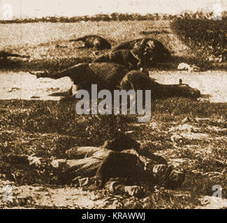 World War One photograph - Carnage after the Battle of Haelen - A German and his horse lie dead - From a magazine - Stock Photo