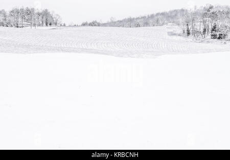 Black and white minimalist background of the winter field in rural New Jersey - Stock Photo