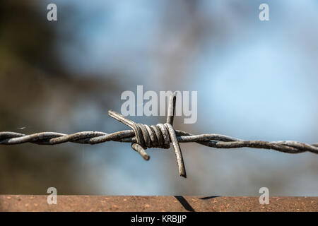 Barbed wire fence made of steel for protection - Stock Photo