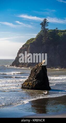 Abbey Island background on Ruby Beach - Stock Photo