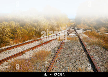 Railway Tracks in the Fog - Stock Photo