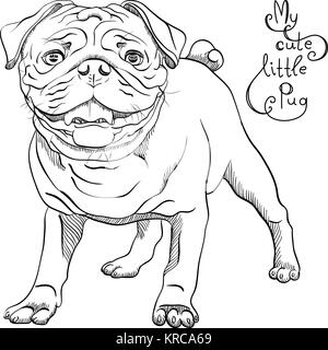 vector sketch cute dog black pug breed - Stock Photo