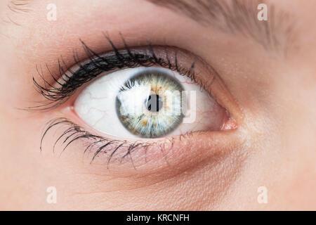 Close-up of a beautiful female blue eye - Stock Photo