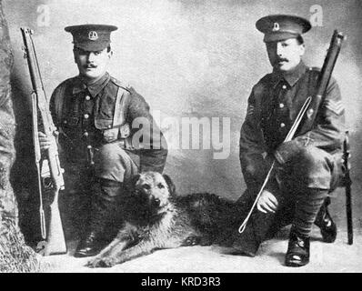 A sentry dog, which went out with the British Expeditionary Force in 1914.  It was killed on the Aisne.       Date: - Stock Photo