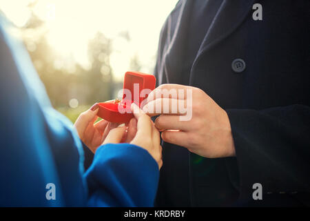 Marriage proposal.   - Stock Photo