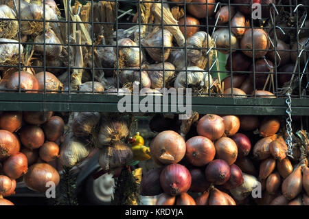 A variety of different types of onions for sale at a stall on borough market in london. Farmers markets for freshly - Stock Photo
