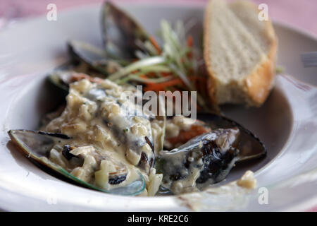 delicious mussels in cream sauce - Stock Photo